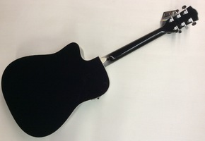 Richwood RD-17 semi akoestische gitaar