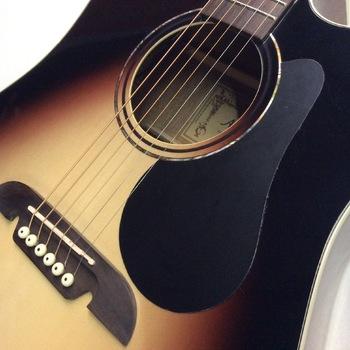 Alvarez RD 26 CESB semi akoestische gitaar met luxe hoes