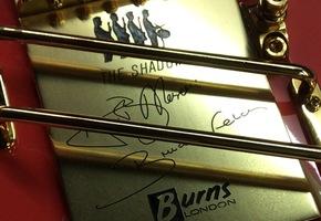 Burns Shadows Custom Signature gitaar