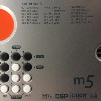 Medeli M5