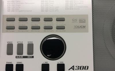 Medeli A300